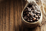 Close up of wooden spoon with coffee beans on it