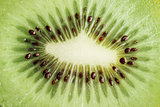 Tasty kiwi fruit close up