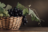 Ripe grapes in a basket still life