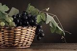 Ripe grapes in a basket still life