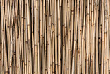 straw background, bamboo wall texture