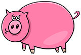 funny comic pig character cartoon illustration