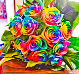 roses colored with the colors of the rainbow