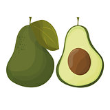 cartoon avocados. Whole and cut avocado isolated on white background.