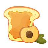 Peach or apricot jam breakfast toast, vector morning meal illustration food icon