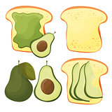 Avocado toast - vector set. Fresh toasted bread with avocado. Delicious sandwich