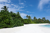 Tropical Maldives island with white sandy beach with palm trees and turquoise clear water and blue sky at sunny day