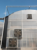 Large greenhouse with the multi ventilators.