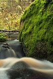huge boulder overgrown green moss