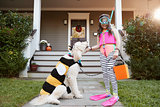 Girl With Dog Wearing Halloween Costumes For Trick Or Treating