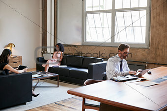 Businessman working at desk, colleagues on sofas, side view