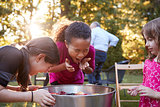 Three young girls apple bobbing at a backyard party