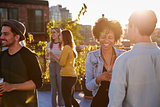Happy friends at a rooftop party backlit by sunlight
