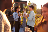 Friends socialising at a rooftop party, backlit by sunlight