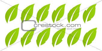 Green leaf set. Eco