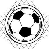 Soccer football sketch on white
