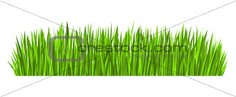 Green Grass Border (vector)