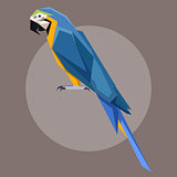 Flat polygonal Blue-and-Yellow Macaw