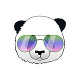 Hand drawn panda in sun glasses. Hipster vector panda bear illustration. Portrait with mirror sunglasses
