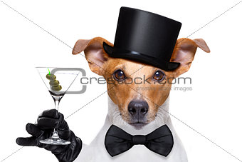 cocktail drinking  and toasting dog