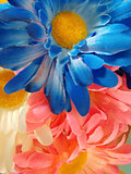 Bright blue, pink, and yellow flowers
