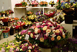 Beautiful bouquets of flowers in shop