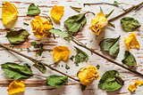 Dried yellow roses with scattered petals and leaves.The view from the top.