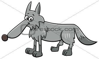 gray wolf animal character cartoon illustration