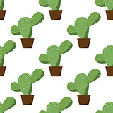 Seamless of green cactus