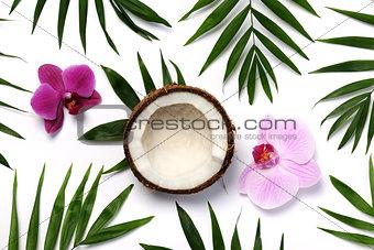 tropical composition