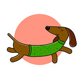 Long dachshund character. An isolated dog for your design.