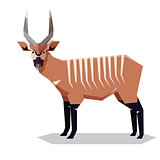 Flat geometric Bongo antelope