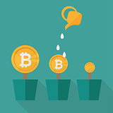 Bitcoin money flowers set with watering cans. Decorative plants in pots