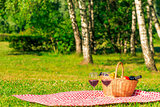 checkered tablecloth on a green lawn in the park with a basket f