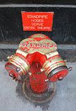 Red and gold siamese standpipe