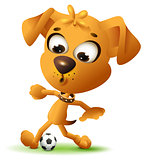 Yellow fun dog play with soccer ball