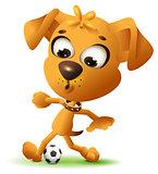 Yellow fun dog play with soccer ball