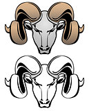 Ram Head Vector Graphic Illustration