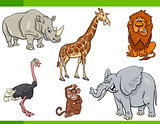cartoon safari animal characters set