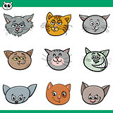 funny cats heads set cartoon illustration