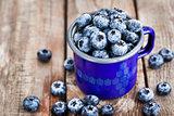 Fresh ripe blueberries and in blue enamel mug