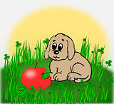 Puppy and worm eaten apple.