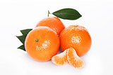 Fresh organic mandarin tangerine fruit with leaves