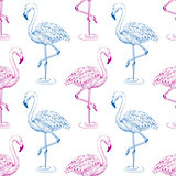 Flamingo sketch seamless pattern.