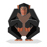 Flat geometric Chimpanzee