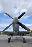 Spitfire front view