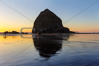 Beachcombers by Haystack Rock in Cannon Beach
