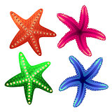 Starfish for decorating tourist posters, banners, leaflets, webs