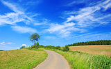 Asphalt road through the green field and clouds on blue sky.