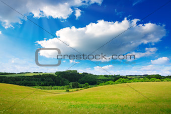 White big clouds and green field.